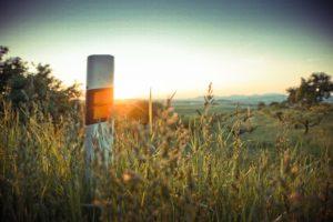 a-road-bollard-picjumbo-com-1024x683